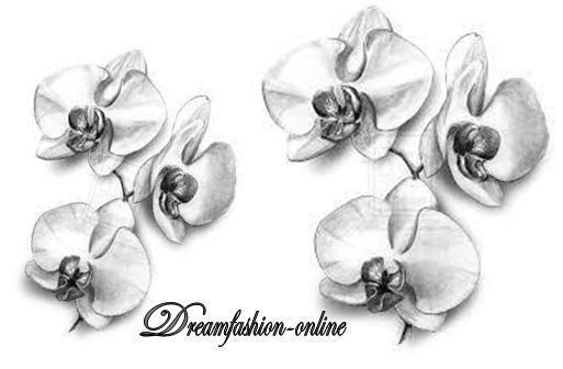 Dreamfashion.online