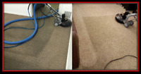 Absolutely NO HIDDEN CHARGES for Steam Deep Carpet Cleaning