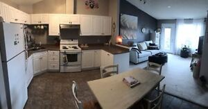 One bedroom Luxury Condo for Rent for July 1st.