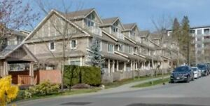 Beautiful 3 bdr townhome near Burquitlam Skytrain for rent
