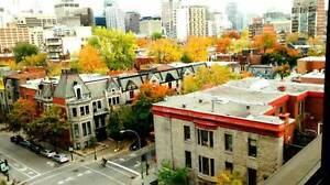 3 1/2 - SUBLET (SEPTEMBER) ALL INCLUDED!!  (5min from McGill)
