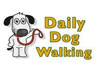 New Dog Walking service
