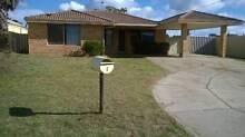 3x1 House Maddington For Rent Maddington Gosnells Area Preview