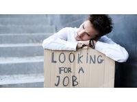 Looking for Leaflet Distributor job