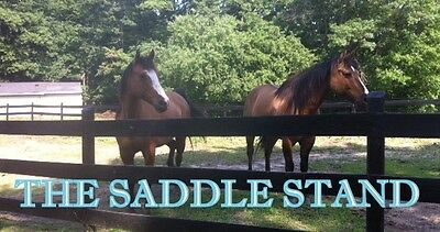 The Saddle Stand