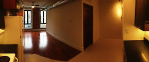 Beautiful Modern 1 Bedroom Apt with Exposed Brick - for FEB 15