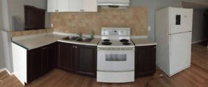 Basement kitchen items for sale