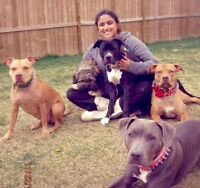 Experienced Pet Sitter at your service! Airdrie & Calgary North