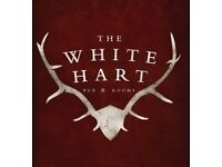 Assistant Manager - The White Hart, Ford