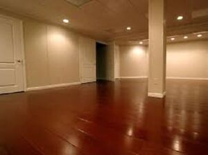 HOUSE/BASEMENT PAINTINGS/RENOVATIONS/REPAIRS BY PROFESSIONALS