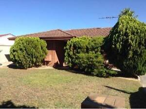 BARGAIN  - 33 MILLGROVE AVENUE Cooloongup Rockingham Area Preview