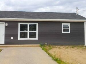 10A Mesher - 2 Bedroom 1 Bathroom newly renovated duplex St. John's Newfoundland image 1