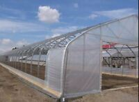 Looking for team to help for greenhouse assembly near Picton