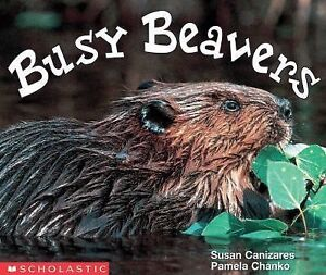 Busy-Beavers-Emergent-Readers-Susan-Canizares-Paperback
