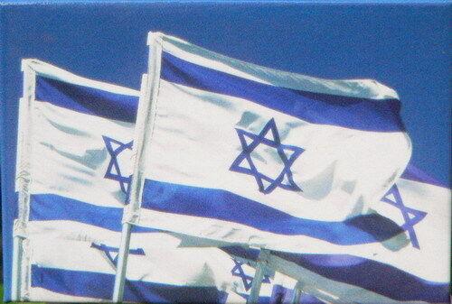 Israel Israeli Flag Fridge MAGNET, Star of David Patriotic Jewish Judaica Symbol