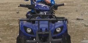 110 CC Quad! Only used a few times. In very good condition.