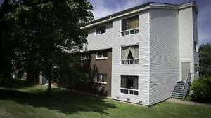 Room to Sublet in a 2 Bedroom Apartment - Female