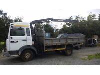 Tipper crane