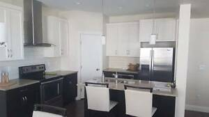 New house for rent in promonotory
