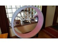 CAT CAZAMI EXERCISE WHEEL - Exercise or training wheel for cats.