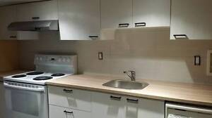 $1300 / 2br - 850ft2 - Bright newly renovated basement suite, 85