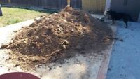 Dirt  and Concrete Removal