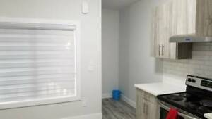 Two bedrooms basements available for rent