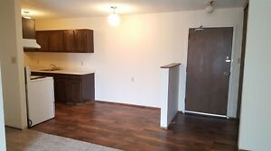 Beautiful 2 bedroom with all new flooring!- Pet friendly!