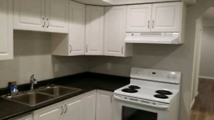 Small 1 bedroom private basement suite Chilliwack/Promontory
