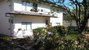 2 Br Apartment for Rent (Burnaby Hospital/BCIT)