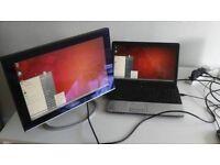 "Philips PHP-X19 19""LCD VGA Monitor"
