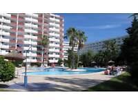 Studio Eden in Port d Alcudia with pool.
