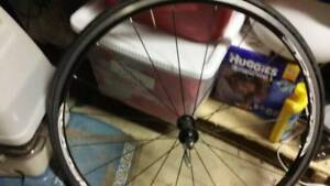 shinamo R500 wheelset
