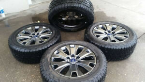 F150 Special Edition Wheels