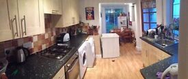 Lovely double room in tidy and quiet house. Just 15 min walking to Cambridge city centre
