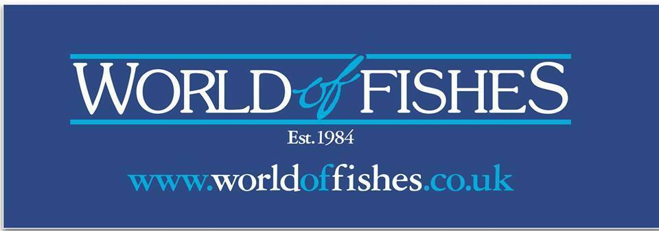 worldoffishes