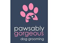 Pawsably Gorgeous Dog Grooming