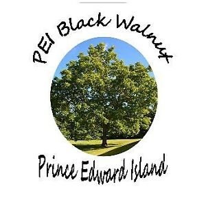 PEI Black Walnut Trees for sale