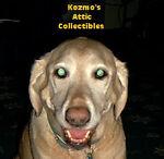 kozmos-attic-collectibles