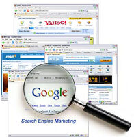 Web Design & Development and Search Engine Optimization (SEO)