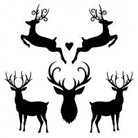 PLEASE DONATE!! Stag and doe in October, Yay!