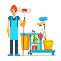 Apartment/house cleaner