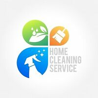 Yiannis Cleaning Service's