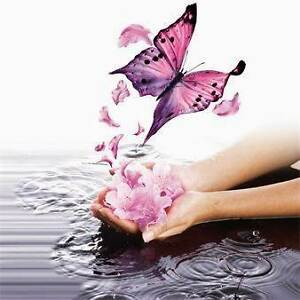 Whispers of Wellness Darra Brisbane South West Preview