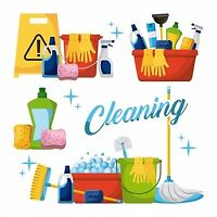 TOTAL CLEANING - HOMES, CARS, CARPETS, WINDOWS, YARDS, SNOW ETC.