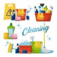 2 Girl Cleaning Team Available