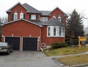 Walkout Basement Apartment for Rent in Newmarket