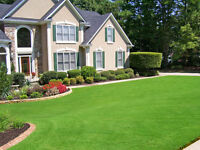 Landscaping, Garden design, Lawn mowing, Property Maintenance