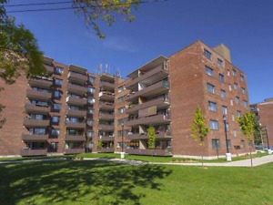 3 1/2  to rent in dorval by the mall ,parc  and airport 1 sept