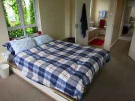 Large bedroom available in bright Battersea flat